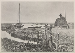 Loading Rushes, Barton Staithe